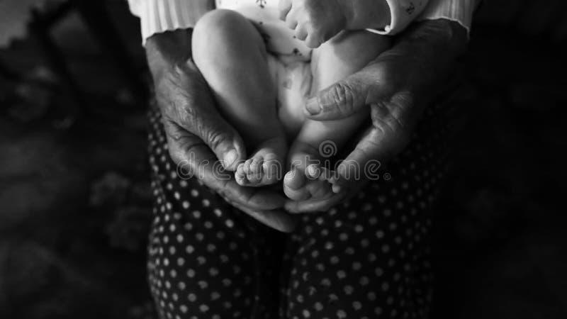 Oude grootmoederhanden die pasgeboren voeten, het gezinsleven van de vierde generatie houden zwart-wit schot, het concept een fam stock fotografie