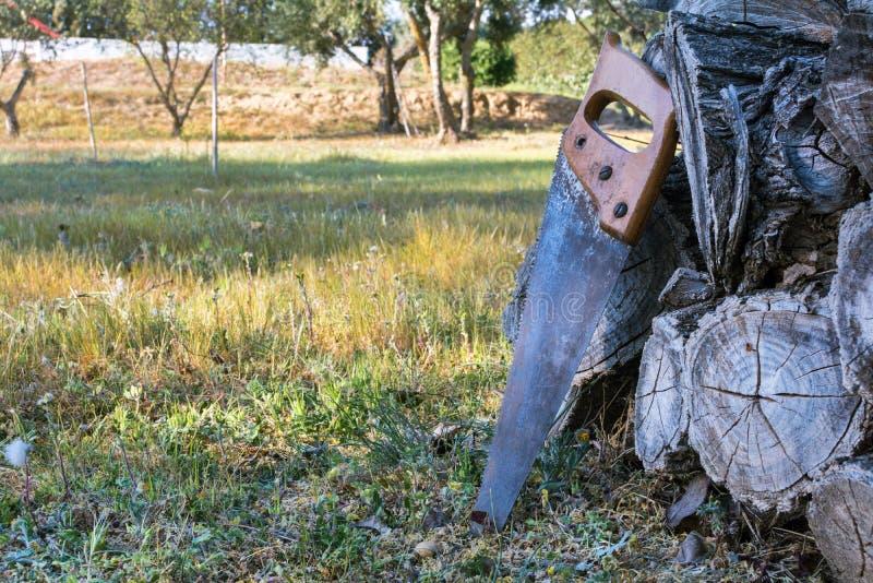 Oude handsaw die op een stapel van houten timmerhout in een landbouwbedrijf rusten stock foto's