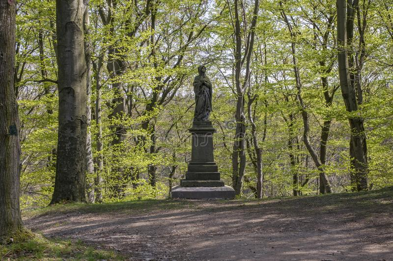 Oude historische kastanjesteeg in Chotebor tijdens lentetijd, bomen in twee rijen, romantische scène stock foto's