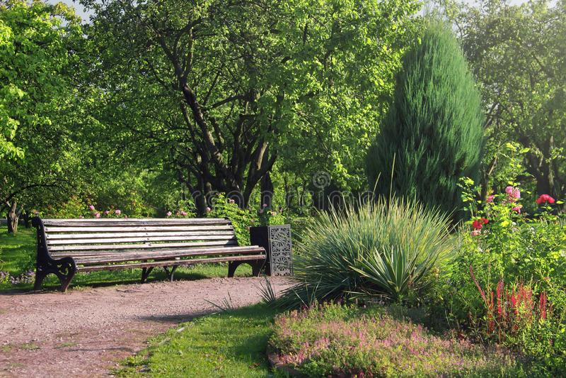 Oude houten bank in een de zomertuin Mooi park in bloei royalty-vrije stock afbeelding