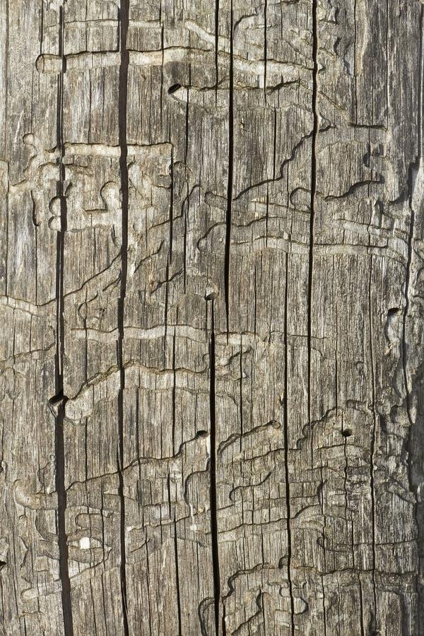 Oude houten beschadigde oppervlakte royalty-vrije stock afbeelding