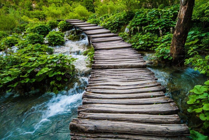 Oude houten brug over rivier stock foto's