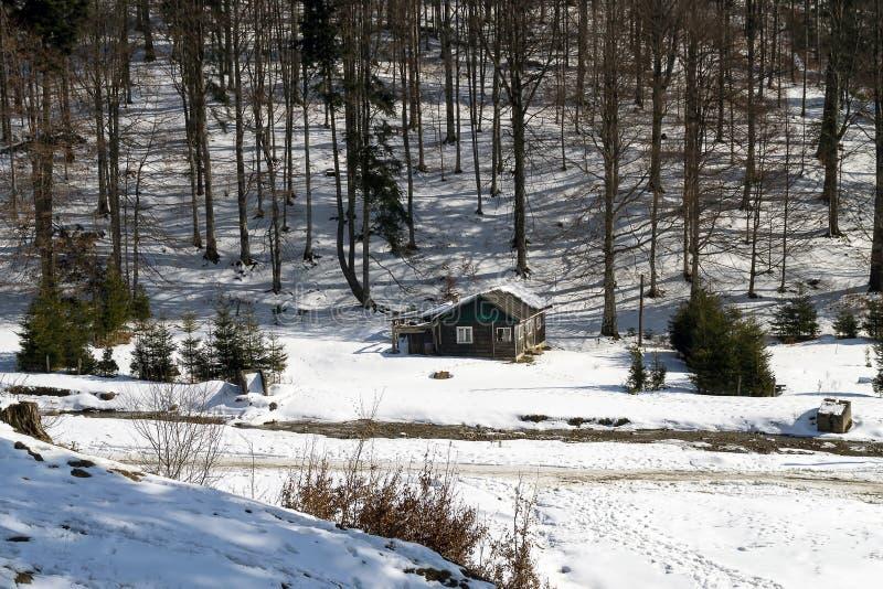 Oude houten cabine in de sneeuw stock foto's