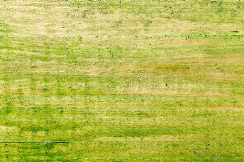 Oude houten die oppervlakte met groene verf wordt geschilderd royalty-vrije stock foto