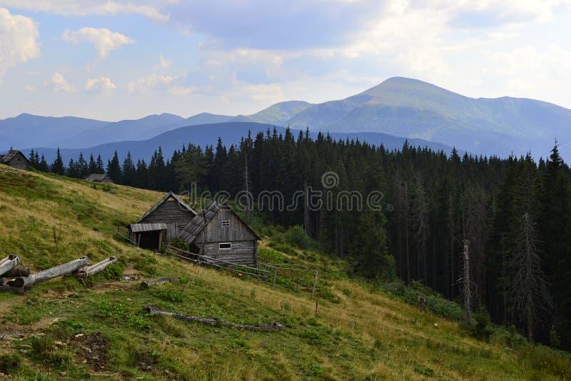 Oude houten hut van herderscowherds op een weide royalty-vrije stock afbeelding