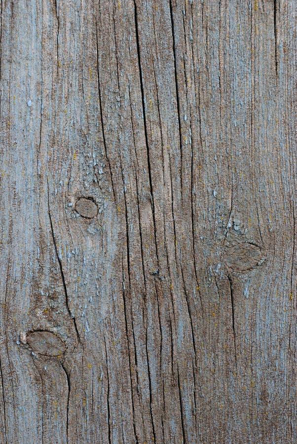 Oude houten plank royalty-vrije stock afbeelding
