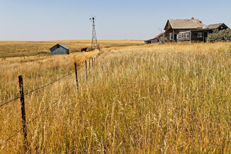 Oude houten schuren en stallen in platteland het Noord- van Dakota royalty-vrije stock afbeelding
