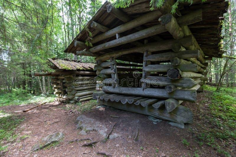 Oude houten schuur in een bos in Finland Mooi de zomerbos stock afbeeldingen