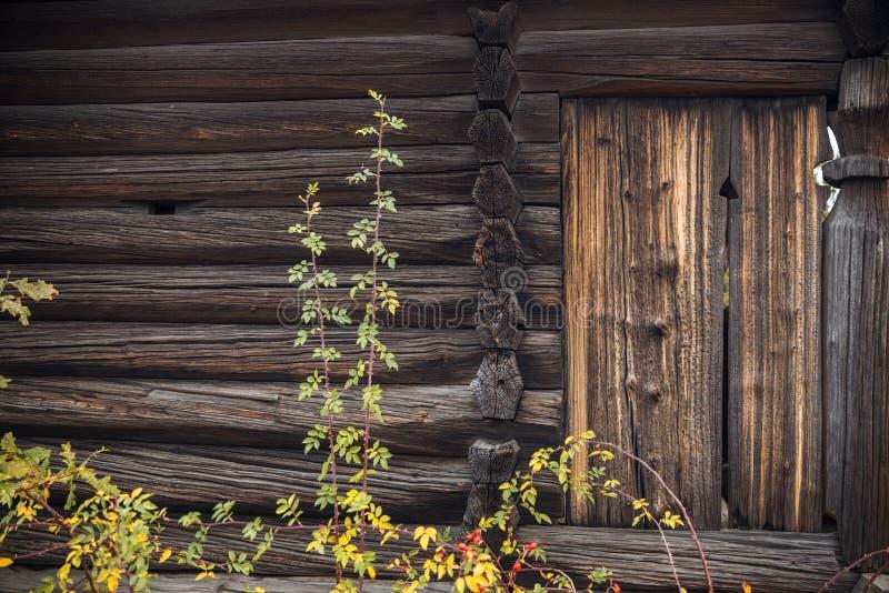 Oude houten staldeur stock foto's