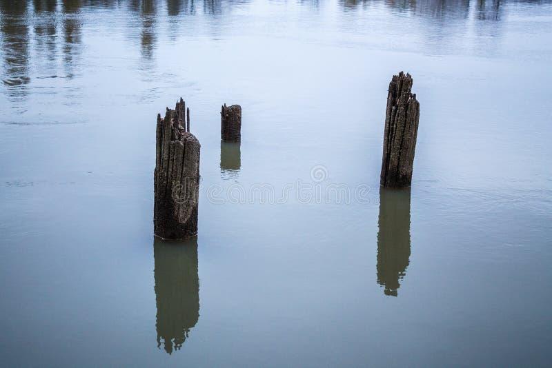 Oude houten stapels van oude geru?neerde pijler uit het water stock foto's