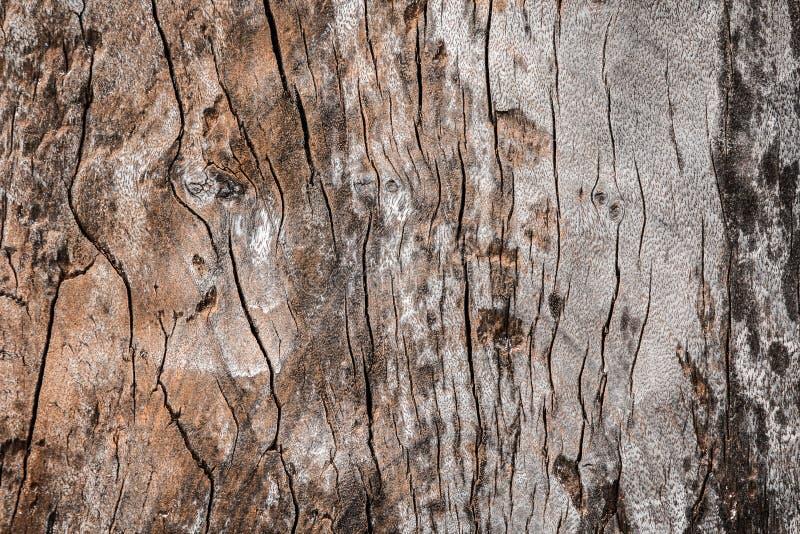 Oude houten textuur Nr 2 royalty-vrije stock afbeelding