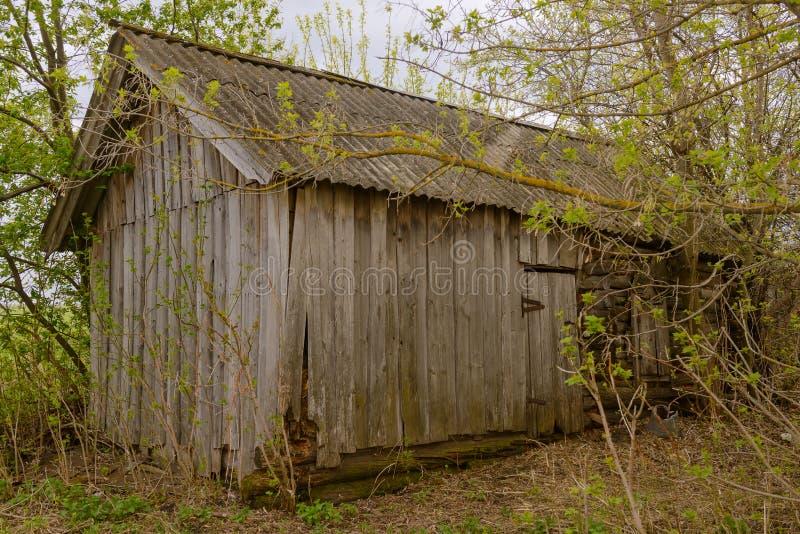 Oude houten verlaten hut onder bomen stock fotografie