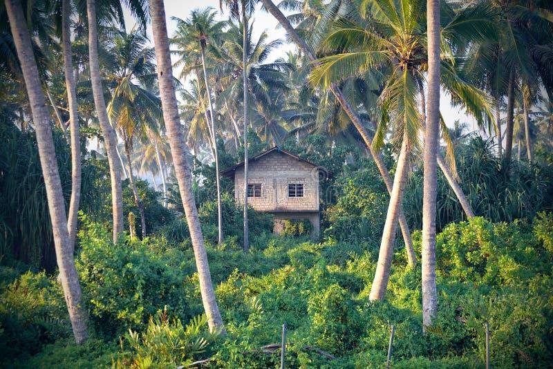 Oude hut royalty-vrije stock afbeeldingen