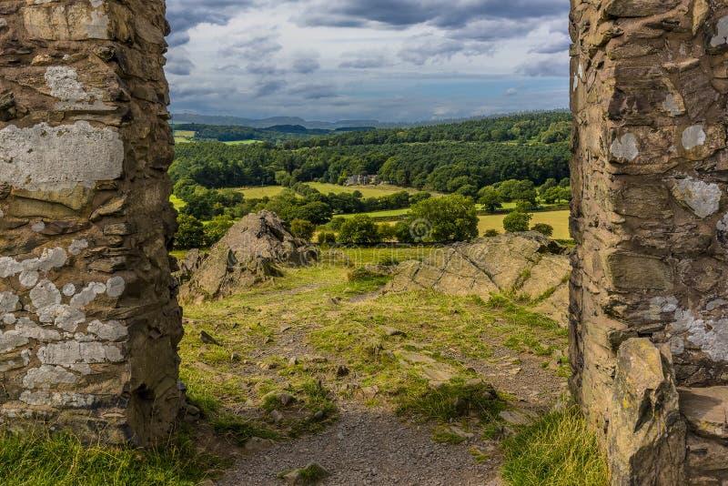 Oude John dwaasheid in Bradgate-Park, Leicestershire, die naar Charnwood-bos kijken royalty-vrije stock afbeeldingen