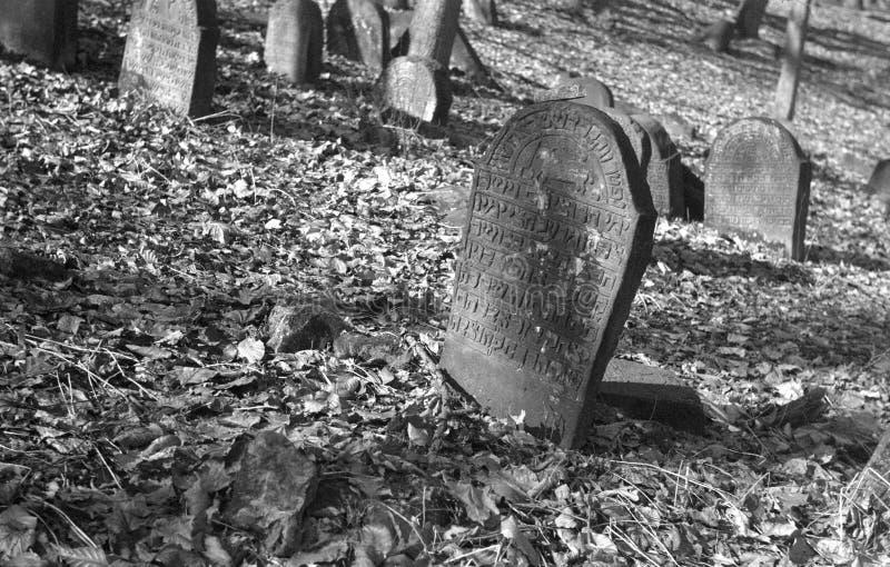 Oude Joodse begraafplaats in BÄ™dzin, Polen royalty-vrije stock foto