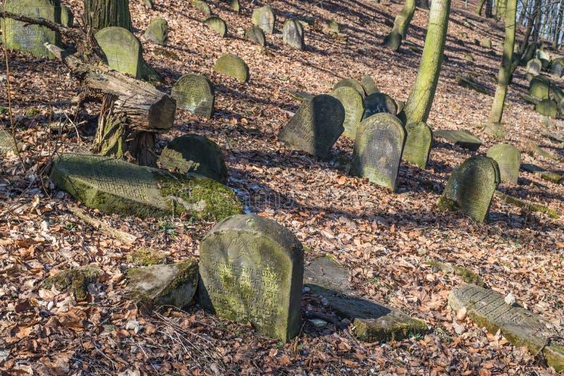 Oude Joodse begraafplaats in BÄ™dzin, Polen royalty-vrije stock afbeeldingen