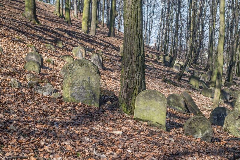 Oude Joodse begraafplaats in BÄ™dzin, Polen stock foto's