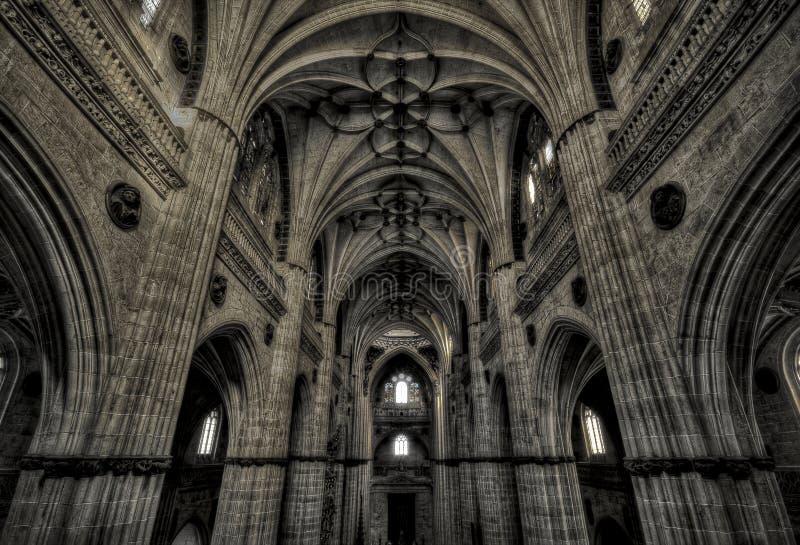Oude Kathedraal van Salamanca stock foto's