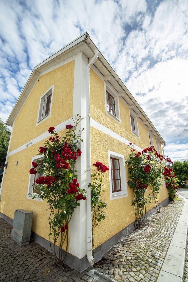 Oude keistraat met rode rozen stock afbeeldingen