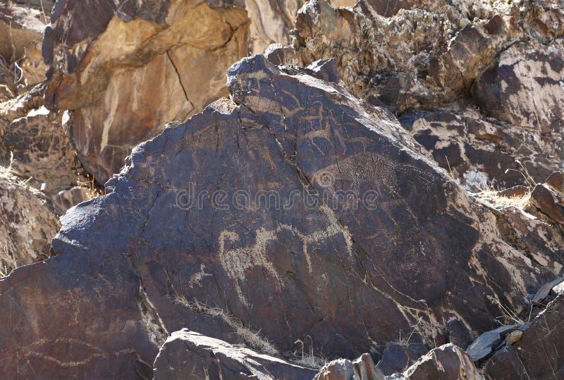 Oude kleine deers van rotstekeningen, hond en moderne vervalsing stock foto