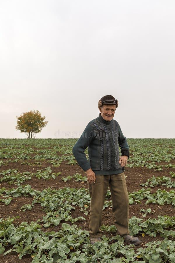 Oude landbouwer royalty-vrije stock foto