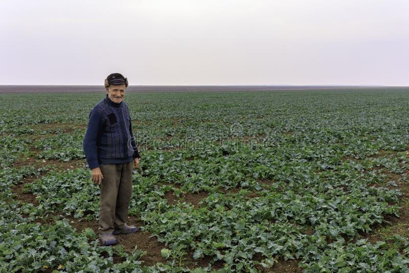 Oude landbouwer stock foto's
