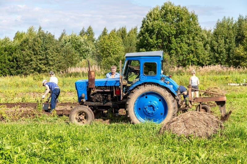 Oude landbouwtrekker die op wielen bij het aardappelgebied werken stock fotografie