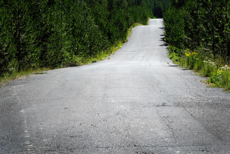Oude landweg in Bos om te onderzoeken stock foto