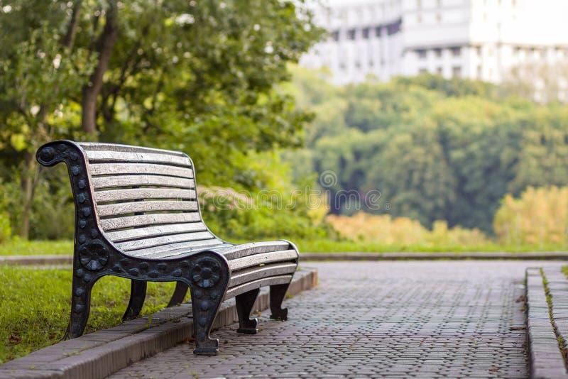 Oude lege houten bank in een schaduw van grote groene boom op heldere de zomerdag Vrede, rust, stil en ontspanningsconcept stock afbeeldingen