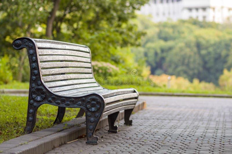 Oude lege houten bank in een schaduw van grote groene boom op heldere de zomerdag Vrede, rust, stil en ontspanningsconcept stock fotografie