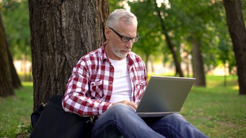 Oude mannelijke zitting op gras en surfen netto op laptop in park, freelance app stock foto's