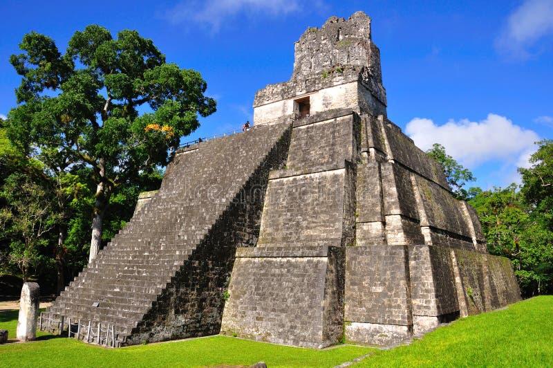 Oude Maya van Tikal Tempel, Guatemala royalty-vrije stock foto's
