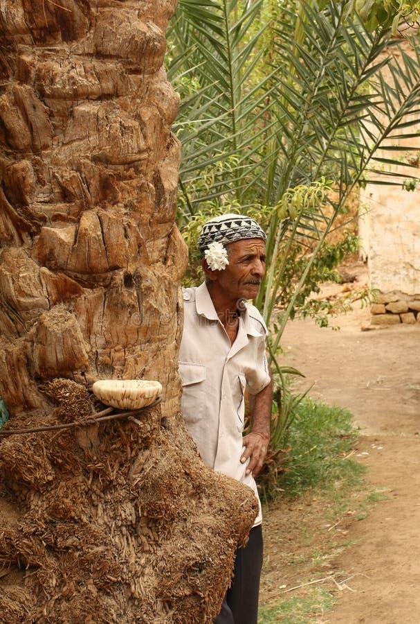 Oude mens die dichtbij een palm in een woestijnoase rust royalty-vrije stock foto