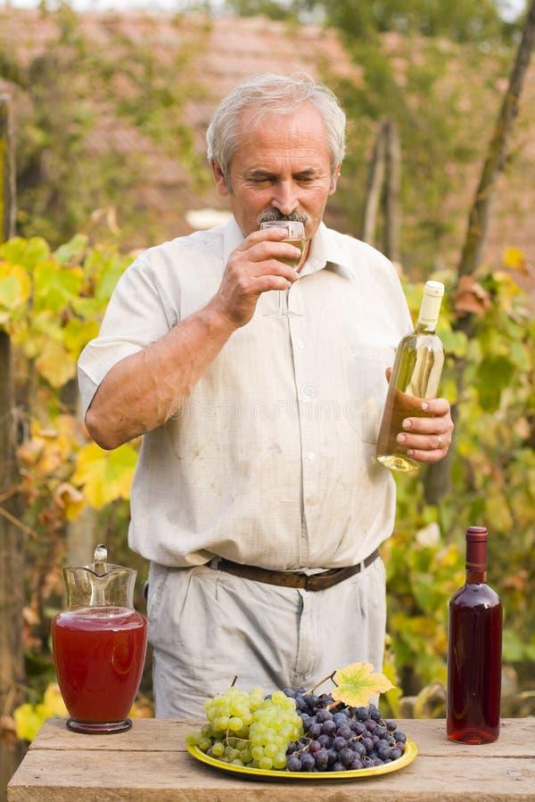 Oude Mens met Wijn stock foto's