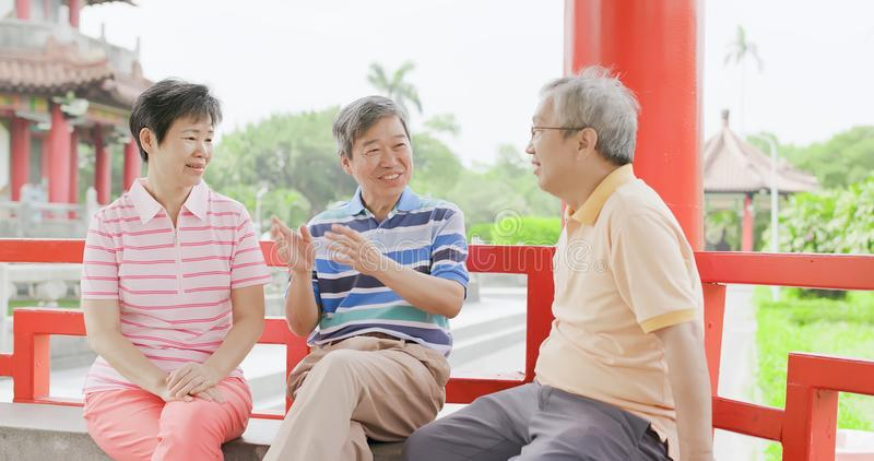 Oude mensen die gelukkig babbelen royalty-vrije stock foto