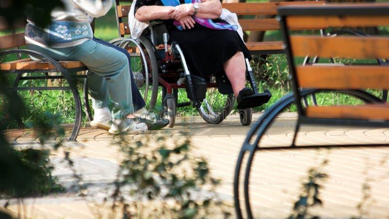 Oude mensen die zitting op bank in openlucht spreken stock foto