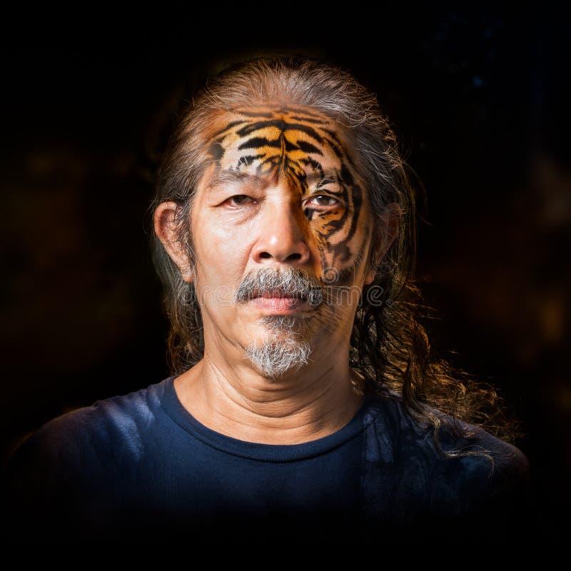 Oude mensentransformatie aan tijger stock afbeeldingen