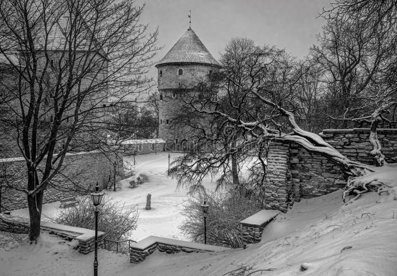 Oude muren en torens van Tallinn in de sneeuw royalty-vrije stock foto