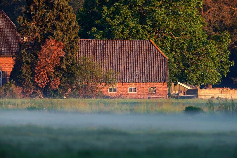 Oude Nederlandse boerderij op nevelige ochtend stock foto's