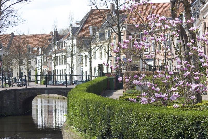 Oude Nederlandse straat royalty-vrije stock afbeelding