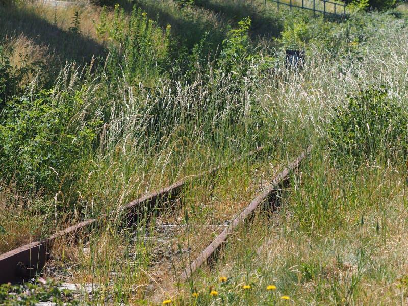 Oude ongebruikte spoorwegsporen met gras stock foto's