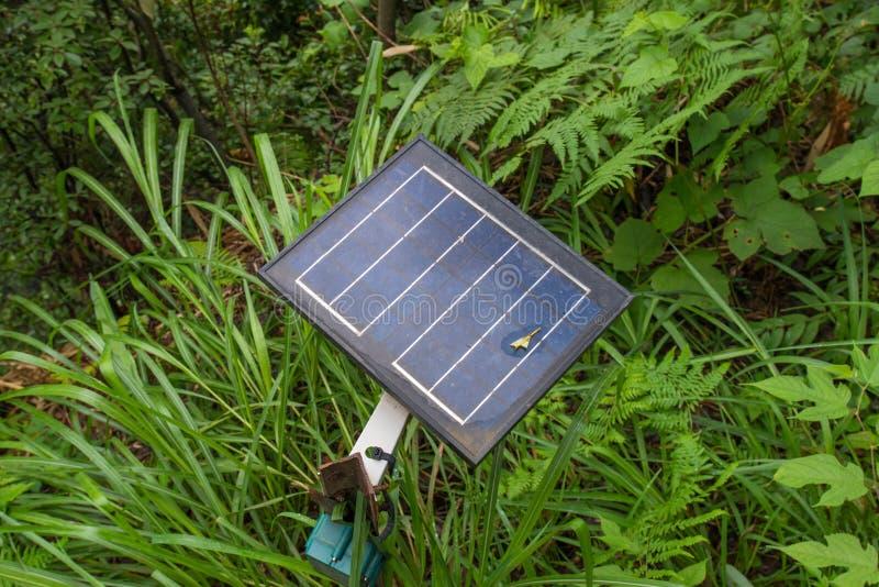 oude photovoltaic gebruikende vernieuwbare zonne-energie in bos stock fotografie