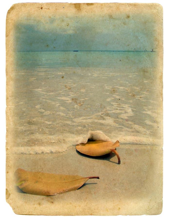 Oude prentbriefkaar. Oceaan en zand stock afbeelding