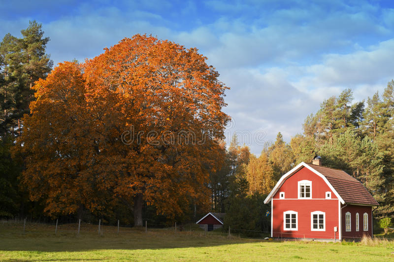 Oude Rode Houten Boerderij in Zweden stock afbeelding