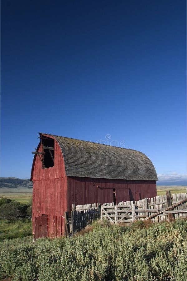 Oude rode schuur in Montana stock foto