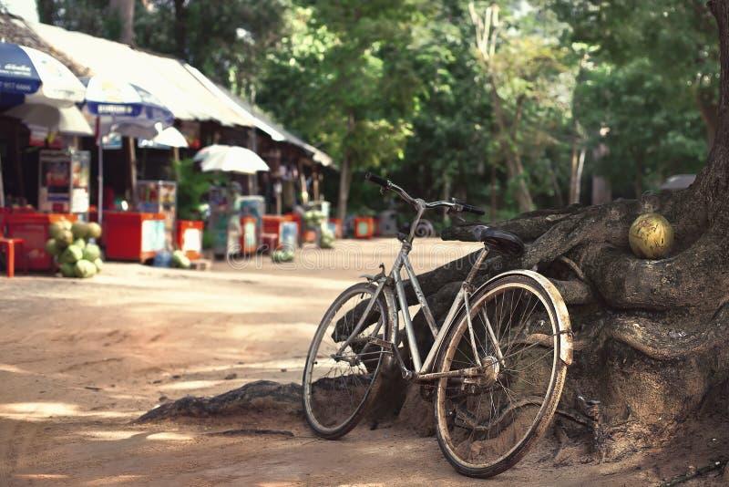 Oude, roestige fiets stock foto