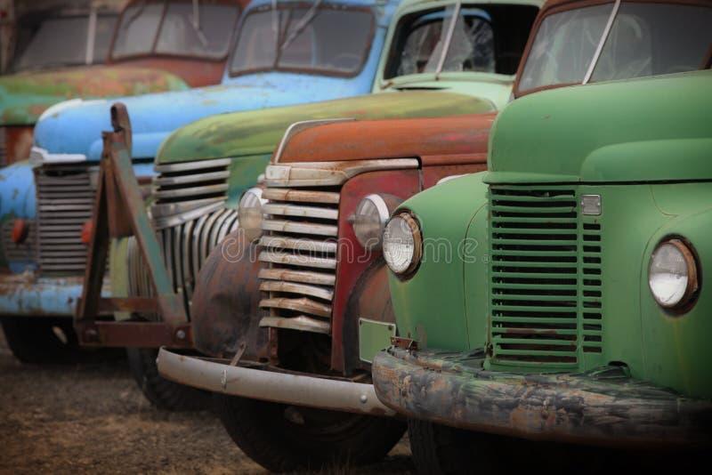 Oude roestige verlaten vrachtwagens stock afbeeldingen