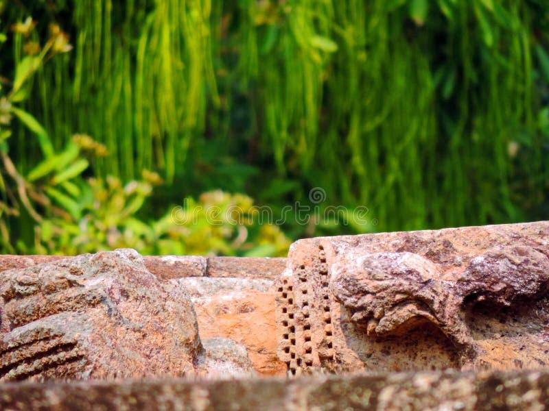 Oude Ruïnes, Aard, Zontempel, Konark Odisha royalty-vrije stock fotografie