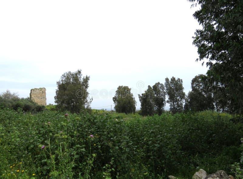 Oude ruïnes van Burgata fort, Hefer Valey, Israël royalty-vrije stock afbeeldingen