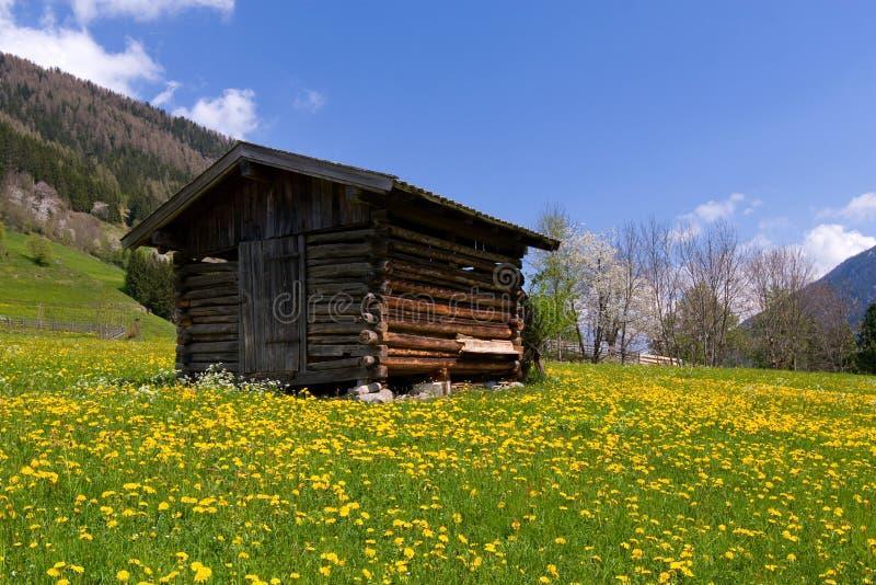 Oude schuur in Alpen stock afbeeldingen